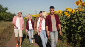 People group friends walking countryside road happy smile, summer. Sunny day stock footage