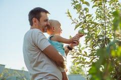 people grow natural food royalty free stock photos