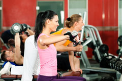 People in gym exercising with weights Royalty Free Stock Photos