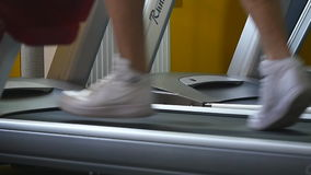 People in the gym treadmill cardio workout.  stock video footage