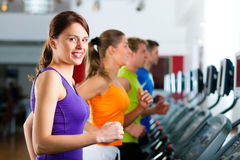 People in gym on treadmill running Stock Photo