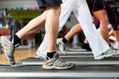 People in gym on treadmill running Stock Photos