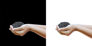 People hand holding soil isolated on white and black background Stock Photography