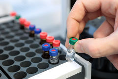 People hand holding a test tube vial sets for analysis in the gas liquid chromatograph. Laboratory assistant inserting laboratory. Scientist holds a chemical stock images