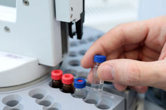 People hand holding a test tube vial sets for analysis in the gas liquid chromatograph. Laboratory assistant inserting laboratory Royalty Free Stock Images
