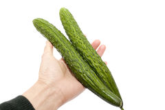 People hand taking two Cucumber Stock Image