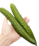People hand taking two Cucumber Royalty Free Stock Photos