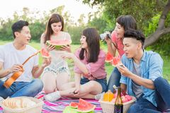 People happy at a picnic royalty free stock photos