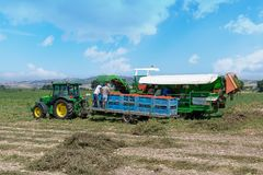People harvest tomato. Harvester collects tomatoes in plastic boxes on a tractor. royalty free stock photography