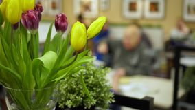 People have dinner in beautifully decorated room. On this video you can see as in shop there is a bouquet of tulips. Yellow tulips stand in shop. Against the stock video footage