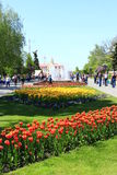 People have a rest in city park with tulips Royalty Free Stock Photo