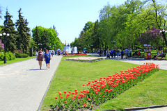 People have a rest in city park with tulips Stock Photography