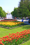People have a rest in city park with tulips Stock Image