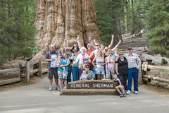People have a selfie in front of General sherman tree in the seq Royalty Free Stock Photos