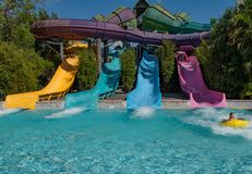 Free People Having Fun  Omaka Rocka Water Slide On Colorful Background At Aquatica 1 Royalty Free Stock Photography - 146100047