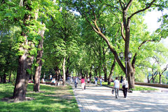 People having a rest in park with trees Stock Image