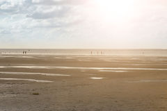 People hiking across mudflats. People walking across the mudflats at north sea coast in Cuxhaven, Germany Stock Images