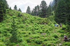 People hiking through the alpine landscape of Gerlostal as part Stock Photography
