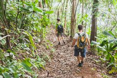 People hiking with backpacks, jungle trekking, group of tourists backpackers. Walking in the forest stock images