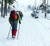 People hiking on snow trail in winter Stock Image