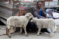 People of Himachal Pradesh, India Royalty Free Stock Image