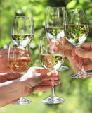 People holding glasses of white wine Stock Photos