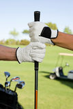 People holding golf club Stock Photography