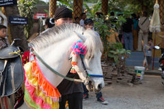 People and horse in traditional buddhist monk ordination ceremon Royalty Free Stock Photo