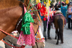 People and horse in traditional buddhist monk ordination ceremon Stock Photography