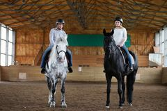 People on a horse training in a wooden arena Royalty Free Stock Images