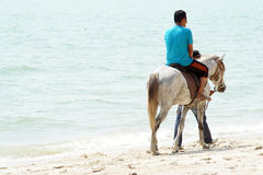 People & Horses. Pengkalan Balak Beach, Melaka, Malaysi - March 25, 2017 ; Malaysian People doing their activity ride a horses during hot weather at the beach Stock Image