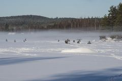 People icefishing on a lake in sweden. People icefishing on a little lake in sweden Royalty Free Stock Photos