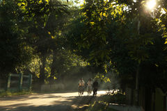 People at indonesia. Riding bicycle in the morning Royalty Free Stock Photo