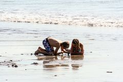 People in the Indonesia. A young boy and girl looking a shell on the beach. royalty free stock image