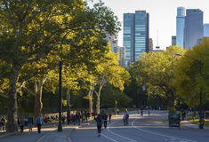 People jogging in Central Park Royalty Free Stock Image