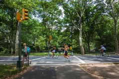 People jogging and cycling at the Central Park in New York City, USA stock photo