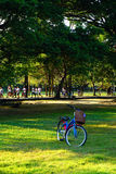 People are jogging and cycling in the public park in the early morning at Wachirabenchathat Park Royalty Free Stock Photo