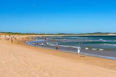 People jogging and enjoying beach holiday on Cronulla pet friend. Cronulla, Australia - February 2, 2014: People jogging, sunbathing and swimming, enjoying beach royalty free stock image