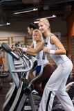 People jogging in a gym Royalty Free Stock Image