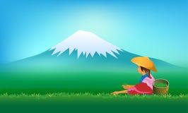 People keep tea leaves. Green season background.s illustration Royalty Free Illustration