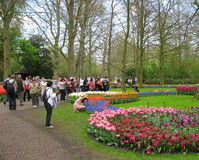 People Keukenhof park Stock Image