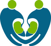 People kidney logo. Illustration art of a people kidney logo with isolated background Royalty Free Stock Images