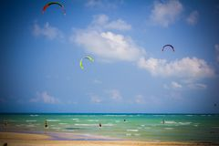 People kite surfing near the beach Stock Photography