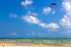 People kite surfing near the beach Royalty Free Stock Images