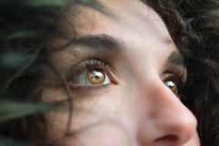 People, Lady, Woman, Eyes, Brown Royalty Free Stock Images
