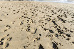 People leave tracks on sand beach El Cotillo, Fuerteventura, Can Royalty Free Stock Images