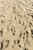 People leave tracks on sand beach El Cotillo, Fuerteventura, Can Royalty Free Stock Image
