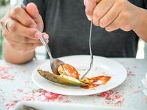 People like to eat Bake New Zealand Mussels with Mozzarella Cheese in a restaurant.  royalty free stock photography