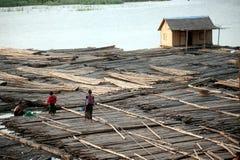 Free People Living Bamboo Raft. Stock Image - 49937521