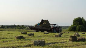 People load hay tractor Royalty Free Stock Photos